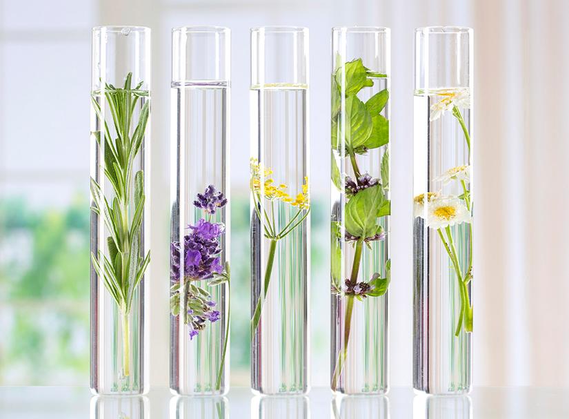 La Nouvelle Botanique, Laboratoire d'Aromathérapie et Hydrolathérapie