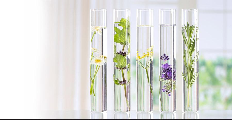 Gamme de soins d'aromathérapie et d'hydrolathérapie